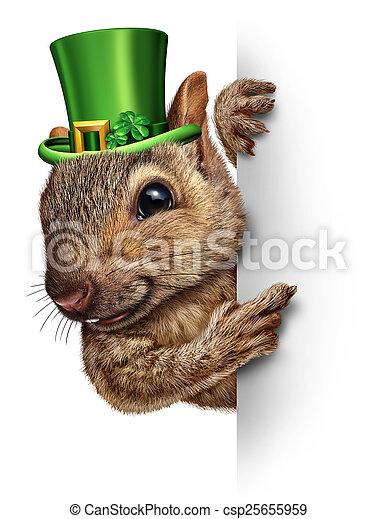Spring Squirrel Banner - csp25655959