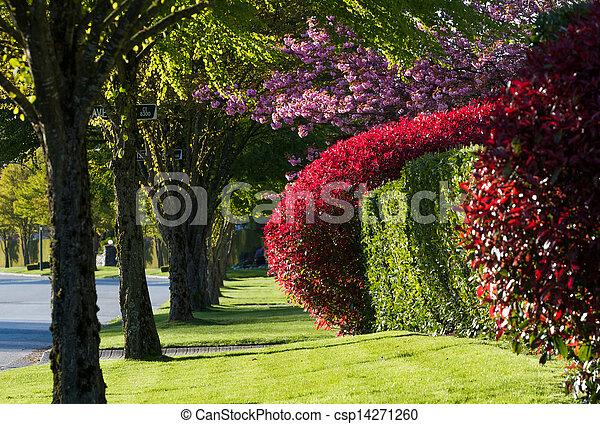 Spring Street - csp14271260