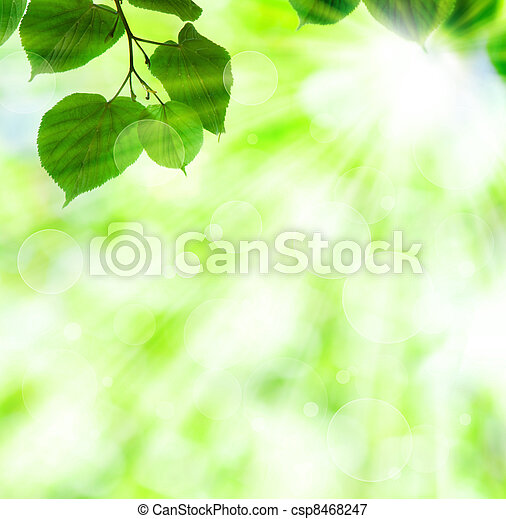 Spring sun beam with green leaves - csp8468247