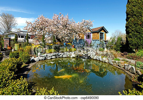 Spring time back yard with pond and blooming tree - csp6490090
