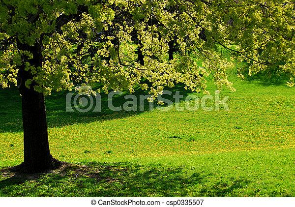 Spring tree - csp0335507