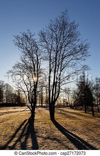 spring trees - csp27172073