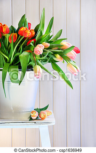 Spring tulips on an old bench - csp1636949