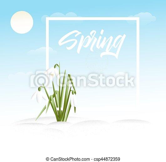 Spring vector grass background - csp44872359