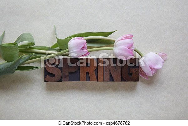 spring word with tulips - csp4678762