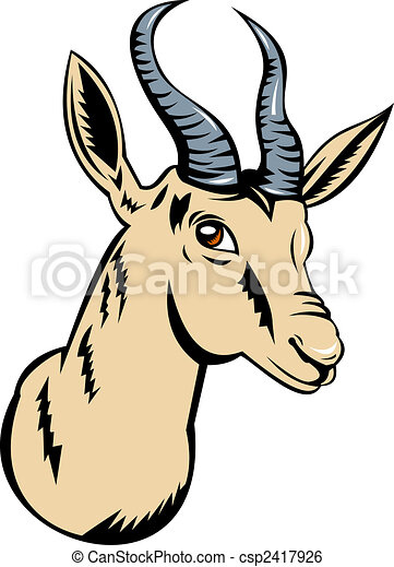 illustration of a springbok head isolated on white stock rh canstockphoto com
