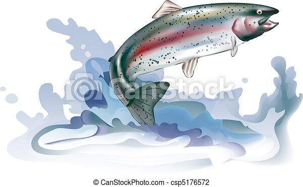 Springende Forelle - csp5176572