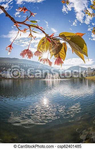Springtime in Bergen, Norway - csp62401485