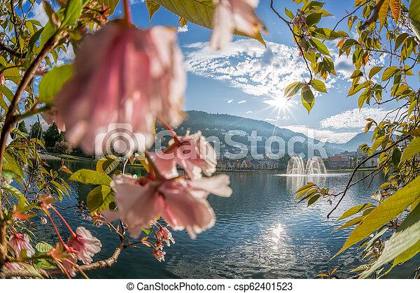 Springtime in Bergen, Norway - csp62401523