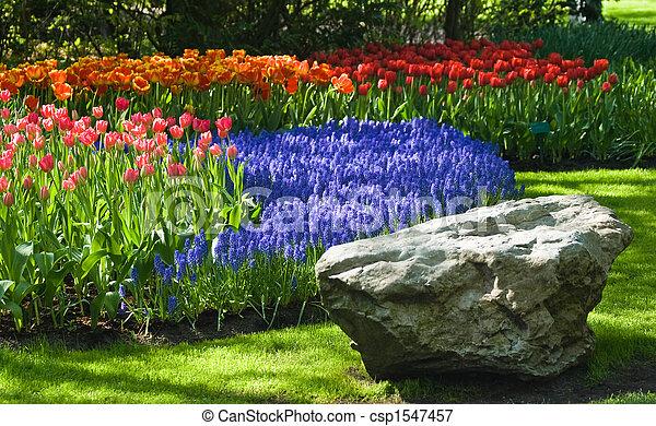 Springtime in park - csp1547457