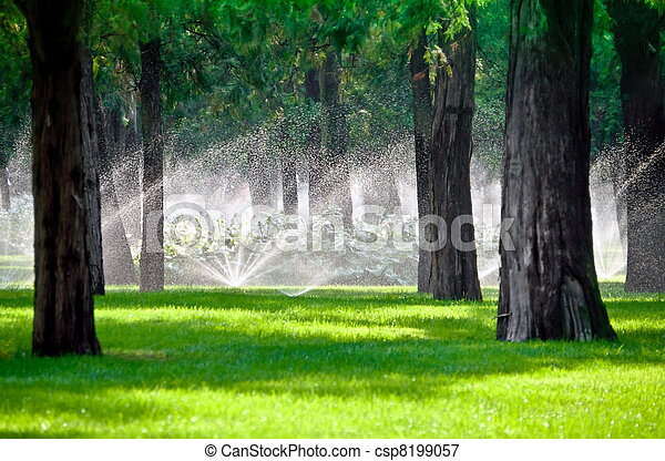 Sprinkler in a lawn with tree - csp8199057