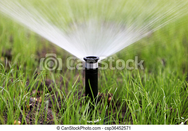 sprinkler of automatic watering - csp36452571
