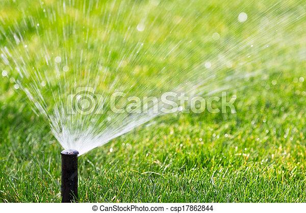sprinkler - csp17862844