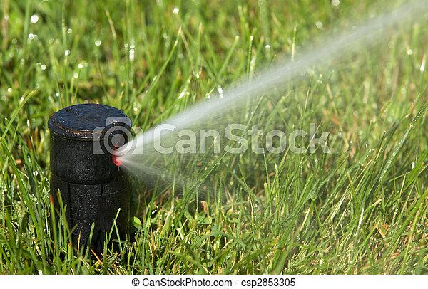 sprinkler watering  - csp2853305