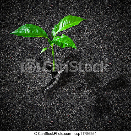 Sprout breaks asphalt concept - csp11786854