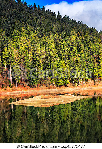 spruce forest on the lake in mountains - csp45775477
