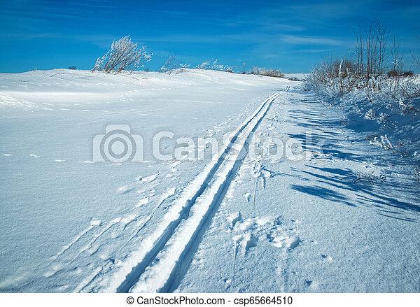 spur, ebene, ski, verschneiter  - csp65664510