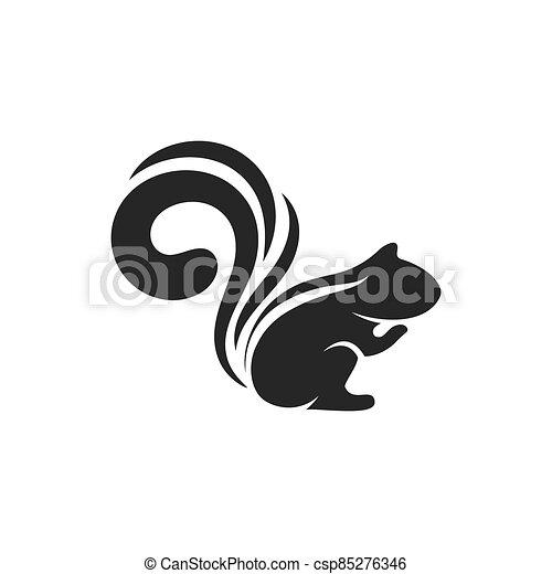 Squirrel - csp85276346