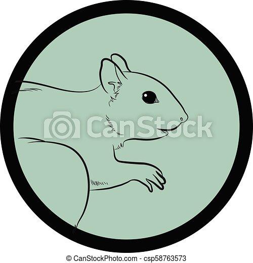 Squirrel Face Closeup Vector - csp58763573