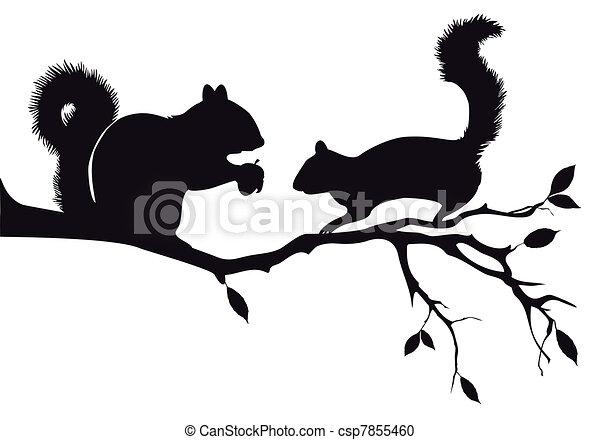 squirrels on tree, vector - csp7855460