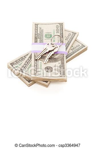 stämm, pengar, stack, isolerat, hus - csp3364947