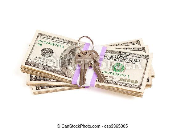 stämm, pengar, stack, isolerat, hus - csp3365005