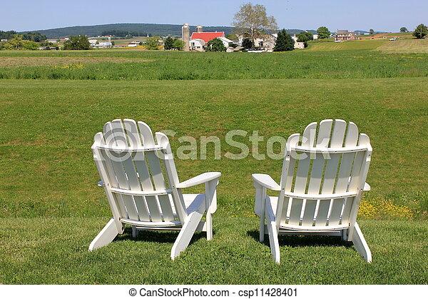 Adirondack Stühle am Rand des Feldes - csp11428401