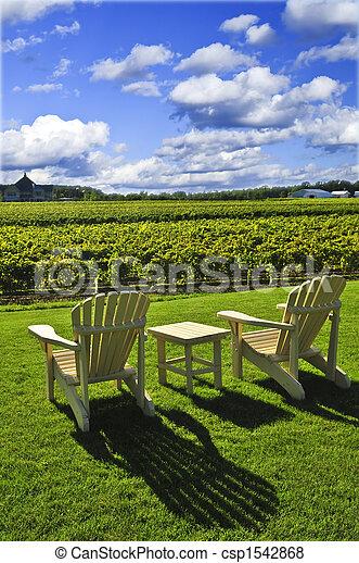 Stühle mit Blick auf Weinberg - csp1542868