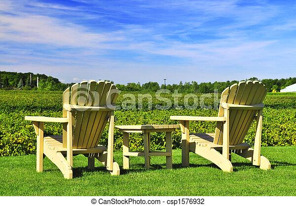 stühle, weinberg, zugewandt - csp1576932