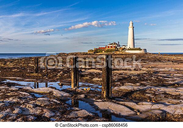 st marys lighthouse - csp86068456