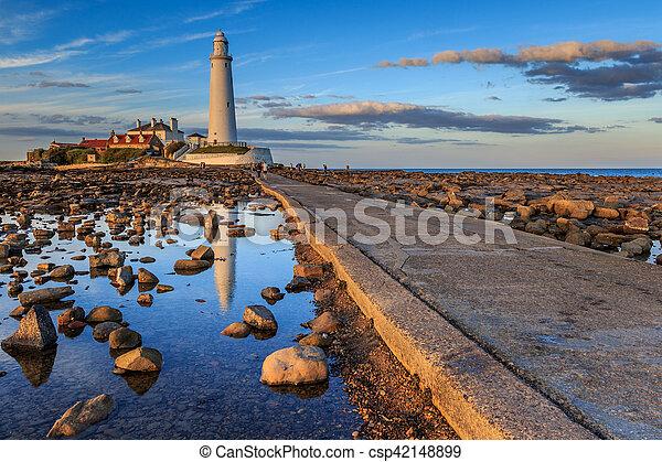 st marys lighthouse - csp42148899