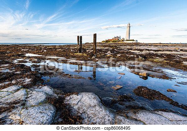 st marys lighthouse - csp86068495