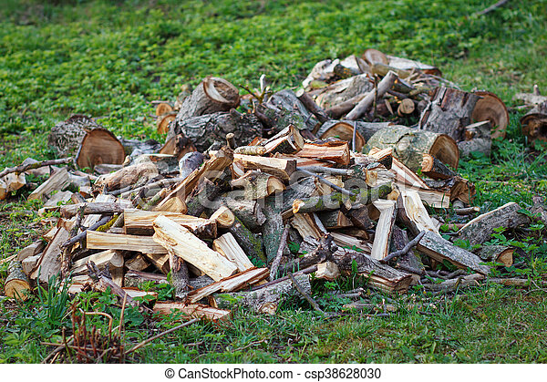 Stack of firewood on the grass - csp38628030