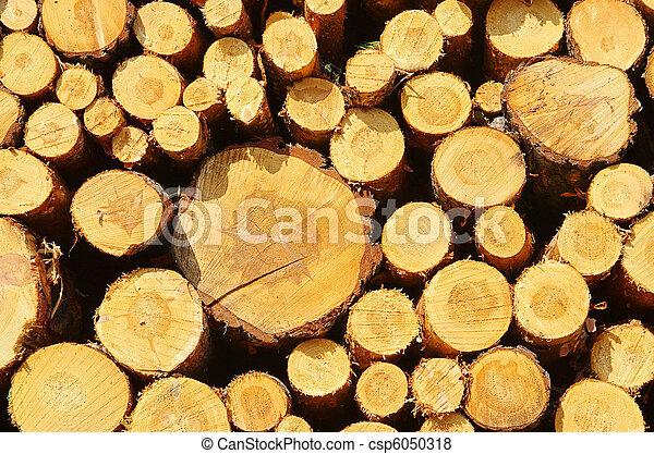 stack of wood 34 - csp6050318