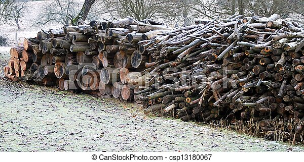 Stack of wood - csp13180067