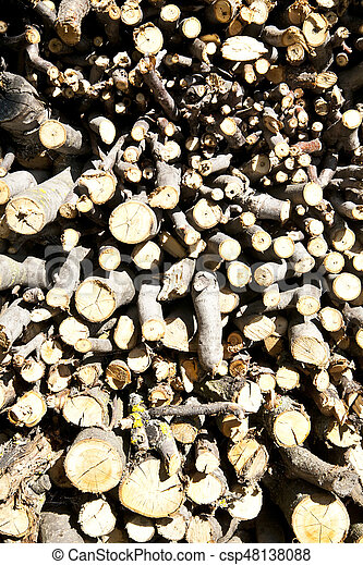 stacked wood for the fireplace - csp48138088