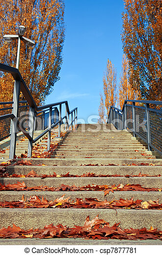 Stairs with autumn leaves on a sunny day. - csp7877781