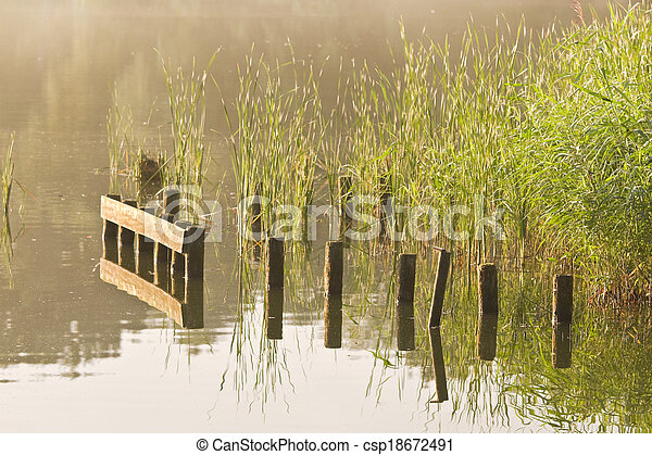 Stakes and reed at sunrise at the waterside - csp18672491