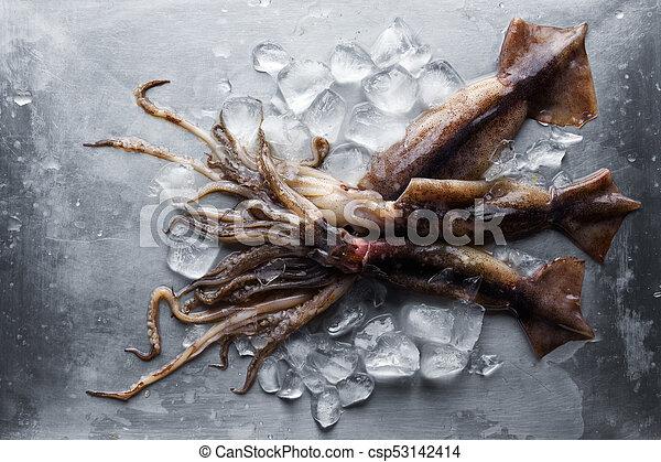 stal, płyta, kostki, kałamarnica, lód, surowy - csp53142414