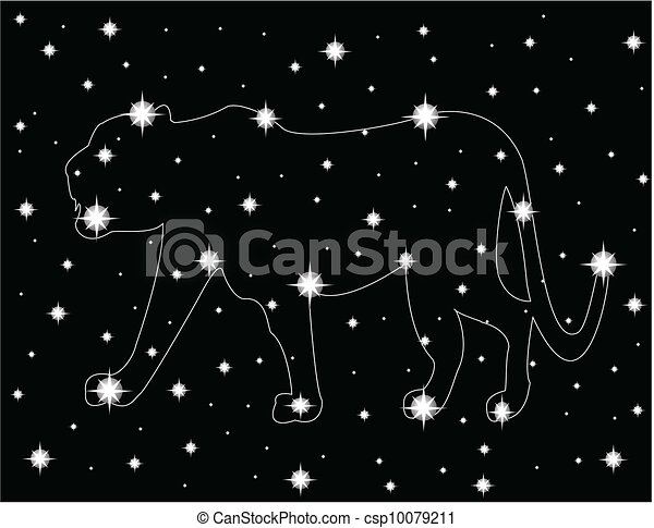 star in the night sky - csp10079211