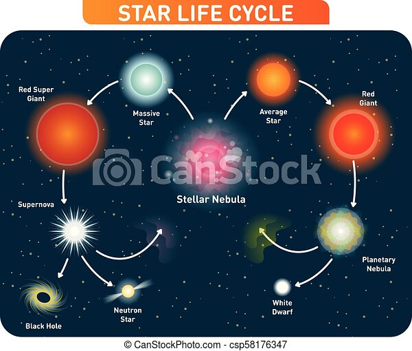 star life cycle steps from stellar nebula to red giant to black holestar life cycle steps from stellar nebula to red giant to black hole vector illustration