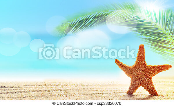 Starfish in sand on the beach - csp33826078