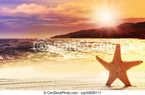Starfish in sand on the beach - csp33828111