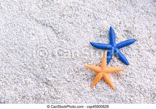 starfish in the beach sand - csp45800628