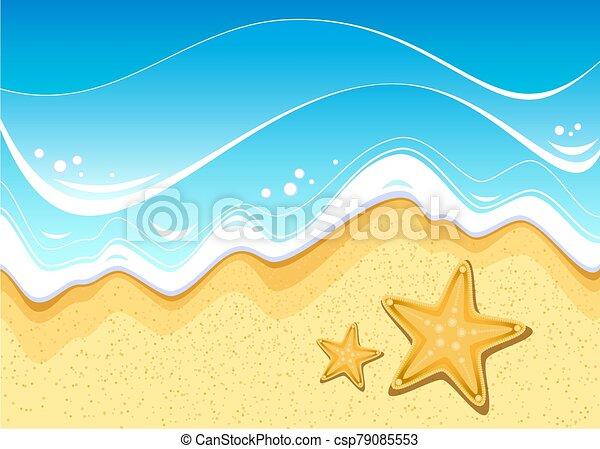 Starfish on the beach - csp79085553