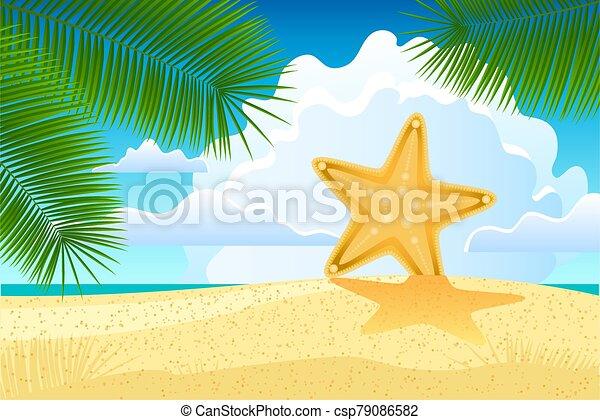 Starfish on the beach - csp79086582