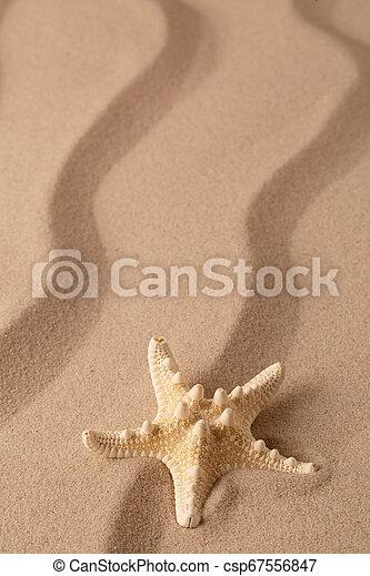 Starfish on the seashore and summer beach sand - csp67556847