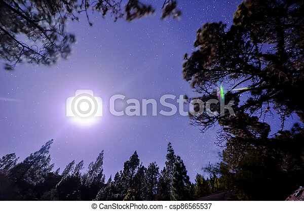 Stars in the Sky at Night - csp86565537