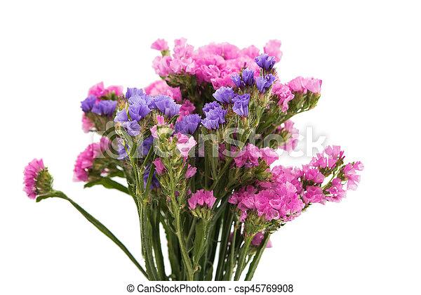 Statice flower bouquet on white background statice flower bouquet csp45769908 mightylinksfo