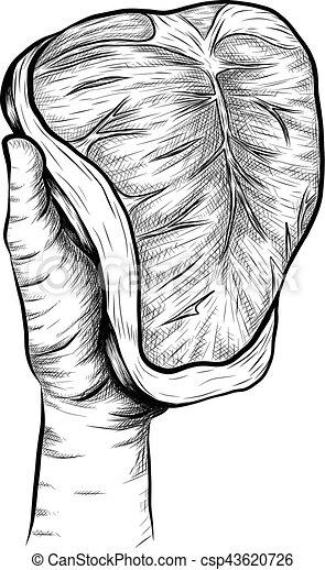 steak sketch by hand drawing. steak vector on white background - csp43620726
